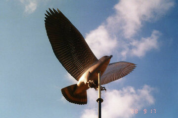 Broad Wing Hawk Weathervane
