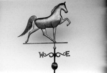 Tenn. Walking Horse Weathervane