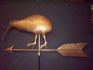Kiwi Bird Weathervane