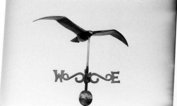 Seagull Weathervane